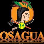 Logo COSAGUAL 2